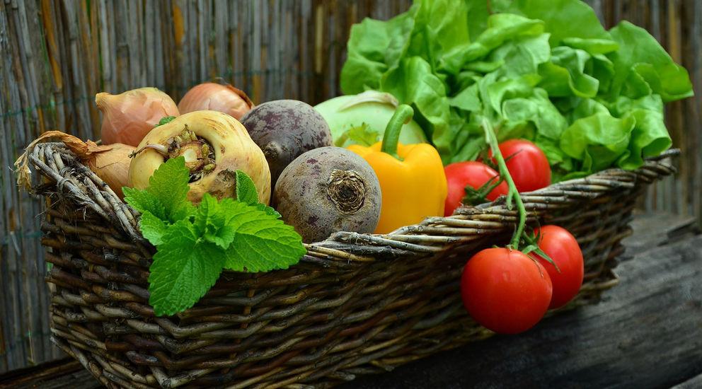 Congerdesign Gesunde Ernährung